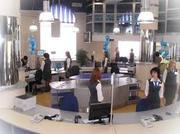 Требуются молодые сотрудники в офис
