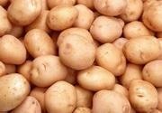 Продам картошку ******